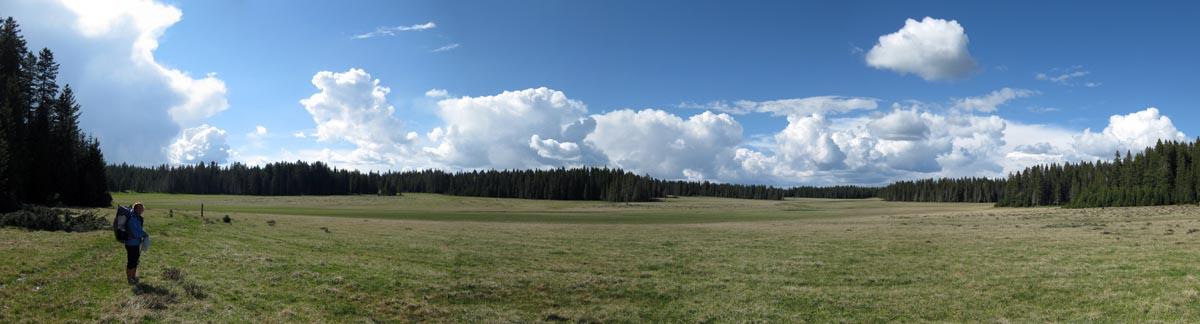 big panorama san pedro meadow