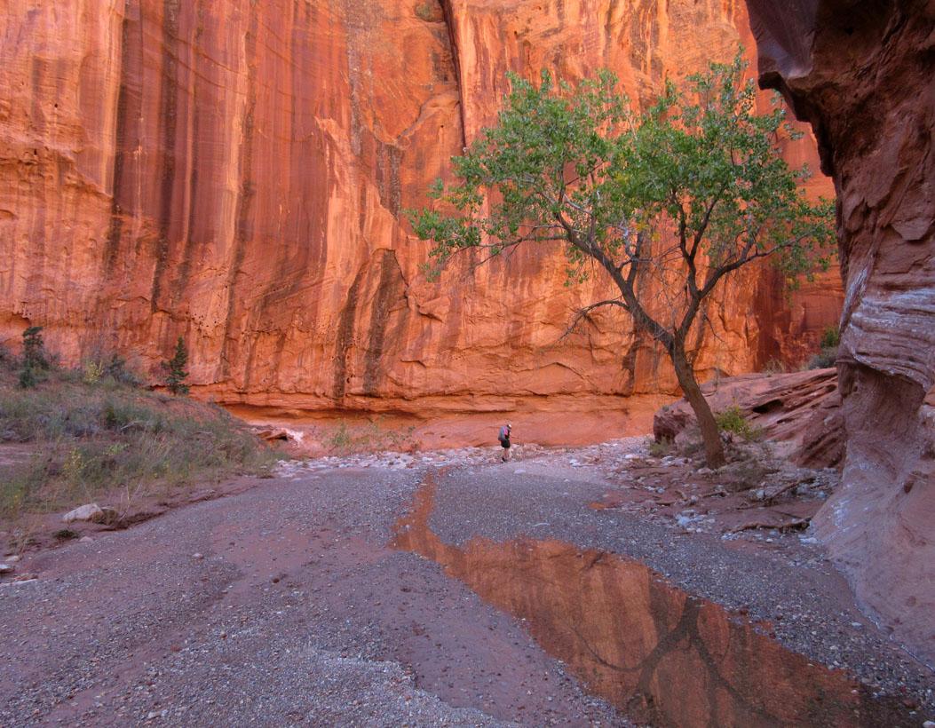 1006-img_1230-silver-falls-canyon