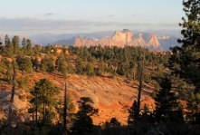 1004-Canaan-IMG_2331-north-to-Zion-in-the-morning