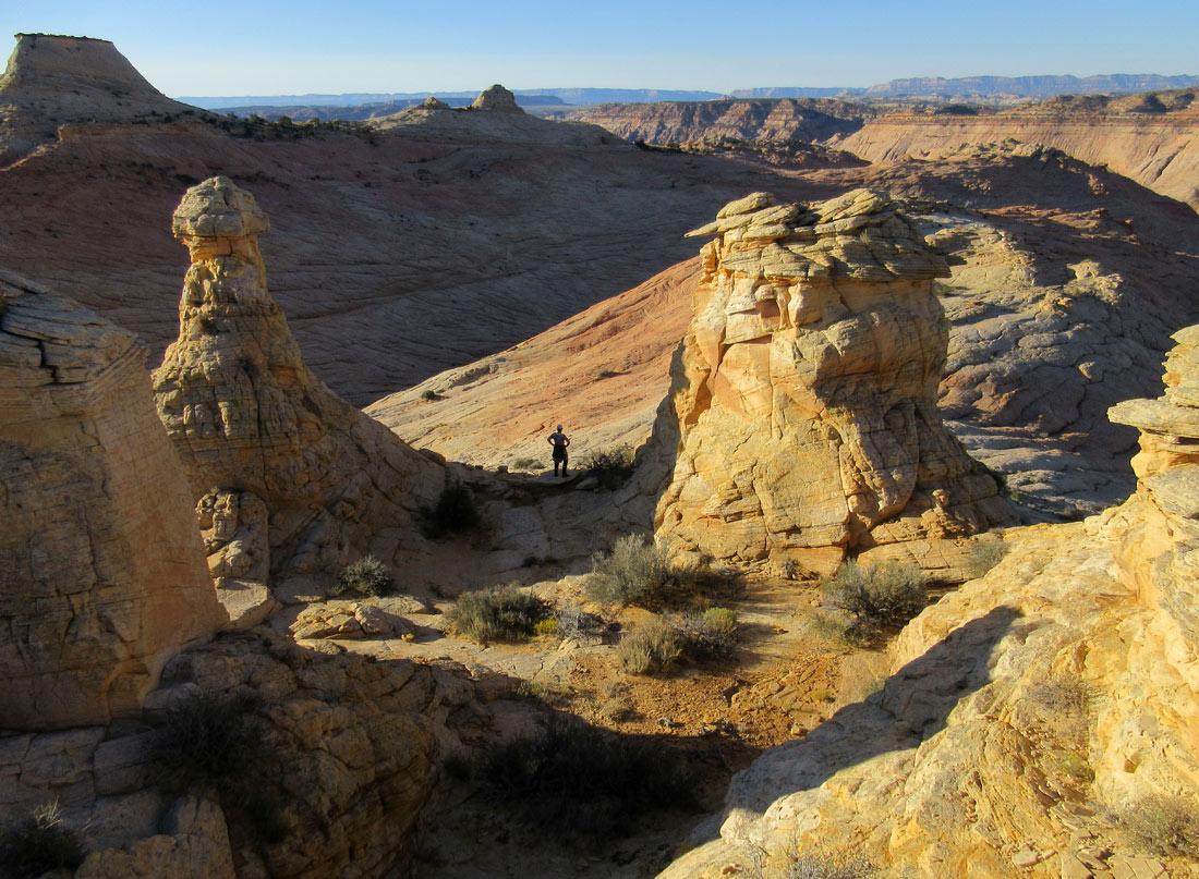 1008-IMG_2549-brigham-tea-bench-dome-climb