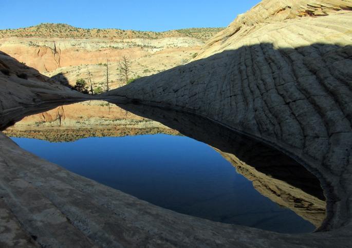 1008-IMG_2560-brigham-tea-bench-down-towards-deer-creek
