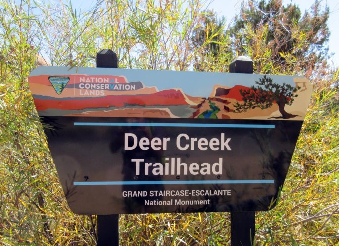 1008-IMG_2584-deer-creek